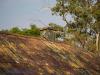 Haggards-Hilldrop-outbuildings-13