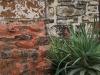 Haggards-Hilldrop-outbuildings-7