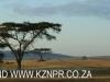 Hilton - Evas field base airstrip (15)