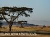 Hilton - Evas field base airstrip (21)