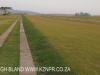 Hilton - Evas field base airstrip (22)