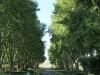 hilton-college-avenue