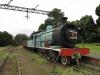 Hilton - Natal Railway Museum - Engines (17)
