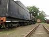 Hilton - Natal Railway Museum - Engines (26)