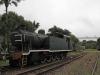 Hilton - Natal Railway Museum - Engines (29)