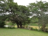 Hluhluwe - Hluhluwe dam & picnic site (2)