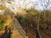 Hluhluwe - Munywaneni Bush Lodge - chalet walkways (2)