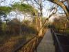 Hluhluwe - Munywaneni Bush Lodge - chalet walkways (3)