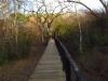 Hluhluwe - Munywaneni Bush Lodge - chalet walkways (7)