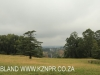 Howick Fairfell Farm - paddocks (1)