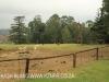 Howick Fairfell Farm - paddocks (3).