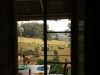 Howick Fairfell Farm - views from the interior out (7)