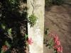 Howick St Lukes Church Grave .... George Ross 1898