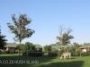 Umgeni Valley Reserve Chalets (5)