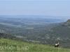 Umgeni Valley Reserve Umgeni valley views (5)