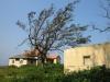 Ifafa - Lecheurs Road - Derelict house - 30.27.642 S 30.39.129 E (1)