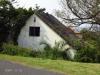 Ifafa - Lecheurs Road - Derelict house - 30.27.642 S 30.39.129 E (2)