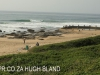 Mtwalume - Beach (2)