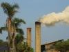 Sezela Sugar Mill - smokestacks (2)