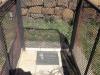 Ela Conelia's grave - 1926 - 2004 - Schuinshooghte - S 27.37.50 E 29.51.41  (2)