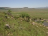 isandlwana-views-17