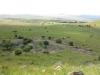 isandlwana-views-from-the-mountain-21