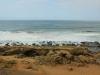 Isipingo Beaches - Clark Road Views - 30d 00.271S 30g 56 (5)