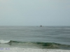 Isipingo Beaches - Clark Road Views - 30d 00.271S 30g 56 - Oil terminal