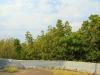 Isipingo - Island Hotel - entrance driveway (5)