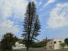 Isipingo - Island Hotel - exterior (1)
