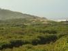 Isipingo Island - views (2)