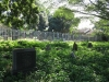 isipingo-cemetary-graves-general-views-3