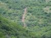 Ithala - Game - Elephant Herd 2 (8)