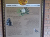 Ithala - Ntshondwe wall displays (13)
