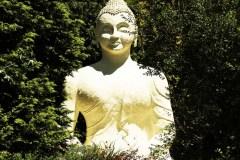 IXOPO - Buddhist Retreat Centre