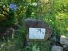 Ixopo Buddhist Retreat - The Gavin Relly valley walk (2)