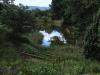 Ixopo Buddhist Retreat - forest walk (6)