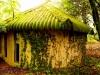 Ixopo Buddhist Retreat - meditation room (3)