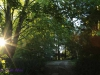 Ixopo Buddhist Retreat - the tranquil gardens (6)