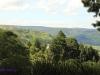 Ixopo Buddhist Retreat - valley & Stupa views