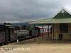 Ixopo Patons Country Railway loco NGG11 No 55  (4).