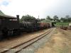 Ixopo Patons Country Railway loco NGG11 No 55  (5).