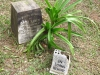 Ixopo - St Johns Anglican Church - Grave - Doris Aimee Kennedy