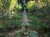 Kamberg - Cleopatra Mountain Lodge - Hrb Garden (2)
