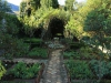 Kamberg - Cleopatra Mountain Lodge - Hrb Garden (3)