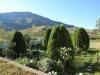 Kamberg - Cleopatra Mountain Lodge - gardens. (1)