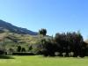 Kamberg - Cleopatra Mountain Lodge - gardens. (4)