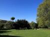 Kamberg - Cleopatra Mountain Lodge - gardens. (5)