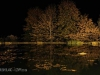 Kamberg - Cleopatra Mountain Lodge - lake night scene (2)