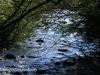 Glengarry Holiday farm river views (5)